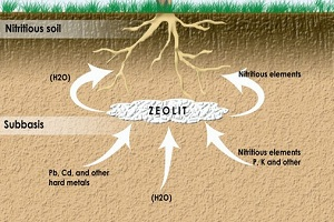 zeolite pembenah tanah pertanian alami pertanian